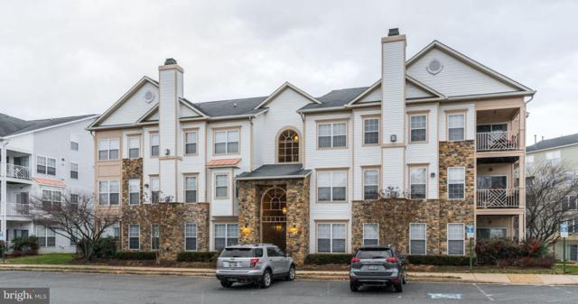 5916 Founders Hill Drive #303, ALEXANDRIA, VA 22310 (#VAFX745746) :: TVRG Homes
