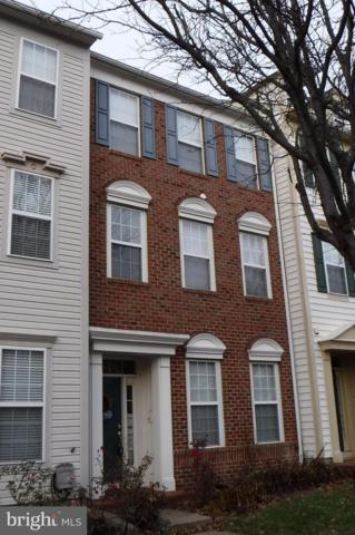 42824 Cedar Hedge Street, CHANTILLY, VA 20152 (#VALO267718) :: Colgan Real Estate