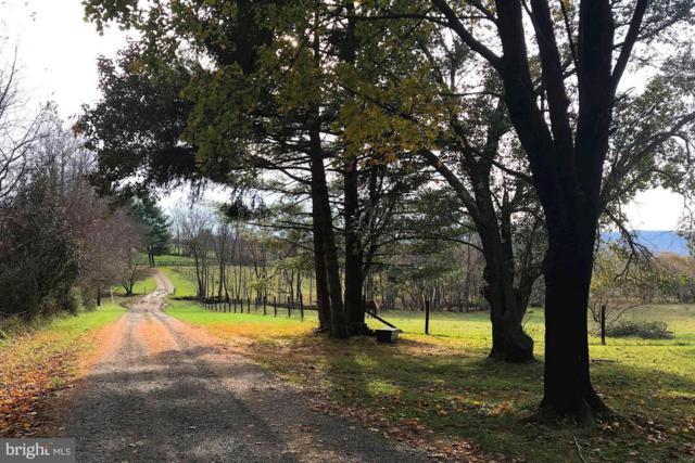 39374 Irish Corner Road, LOVETTSVILLE, VA 20180 (#VALO267776) :: The Greg Wells Team