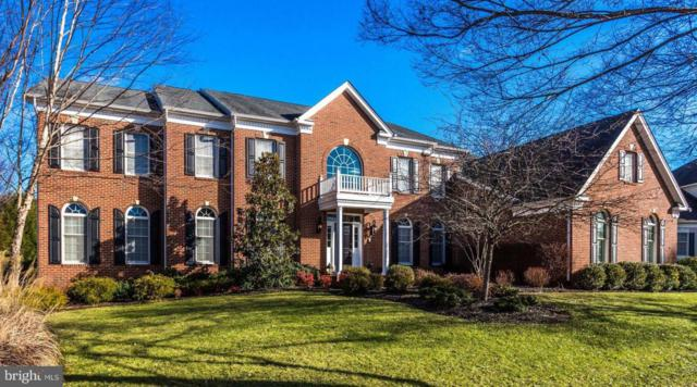 5383 Fishers Hill Way, HAYMARKET, VA 20169 (#VAPW322096) :: Colgan Real Estate