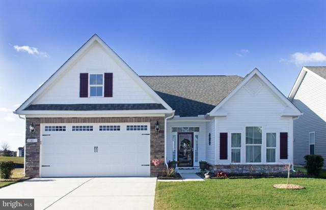 43 Waterside Drive, BRIDGEVILLE, DE 19933 (#DESU128880) :: The Allison Stine Team