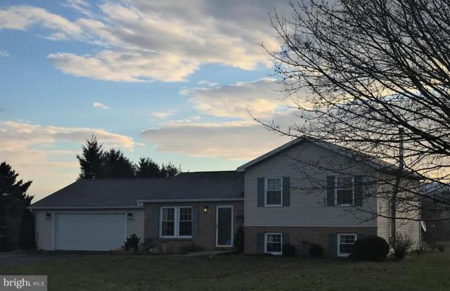 98 Naugle Road, SHIPPENSBURG, PA 17257 (#PACB106098) :: The Heather Neidlinger Team With Berkshire Hathaway HomeServices Homesale Realty