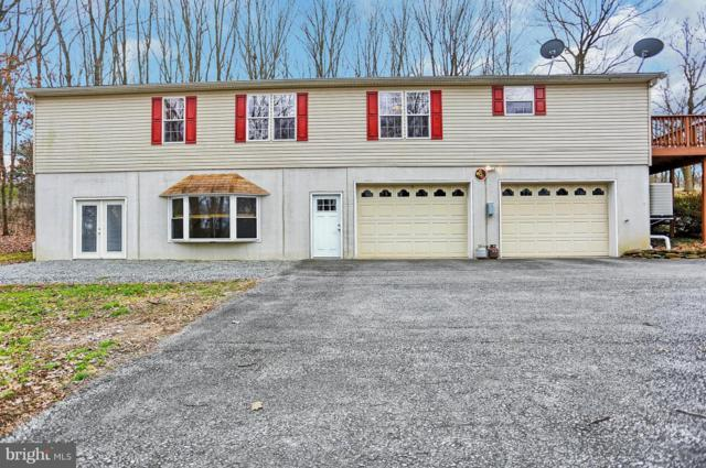 46 Holmgren Lane, WINDSOR, PA 17366 (#PAYK105684) :: Benchmark Real Estate Team of KW Keystone Realty