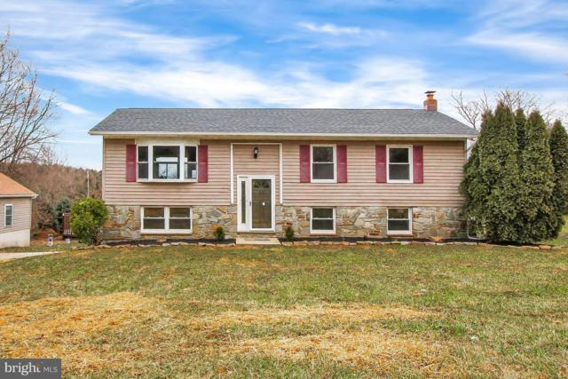 1371 Fawn Grove Road, NEW PARK, PA 17352 (#PAYK105702) :: CENTURY 21 Core Partners