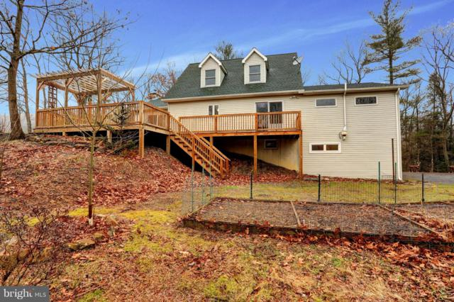12131 Buffalo Trace Road, MILLERSTOWN, PA 17062 (#PAPY100260) :: The Joy Daniels Real Estate Group