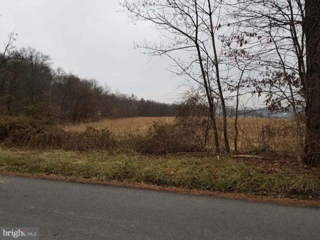 Lot 1 Bunkertown Road, MCALISTERVILLE, PA 17049 (#PAJT100080) :: The Joy Daniels Real Estate Group
