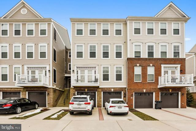 42243 Canary Grass Square, ALDIE, VA 20105 (#VALO267930) :: The Greg Wells Team