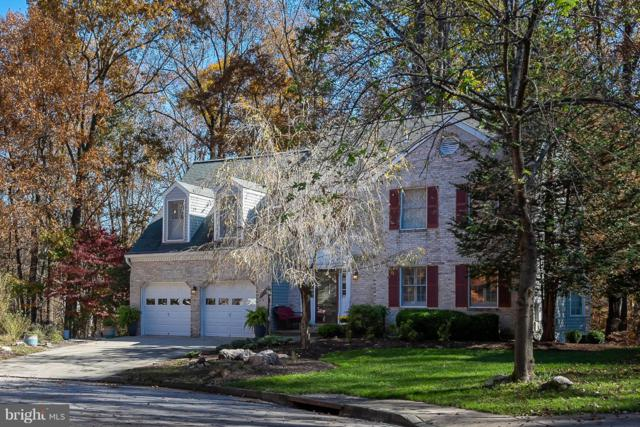 7518 Lilac Sea, COLUMBIA, MD 21046 (#MDHW209242) :: The Speicher Group of Long & Foster Real Estate