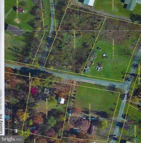 Charlestown Road, MERCERSBURG, PA 17236 (#PAFL141240) :: The Heather Neidlinger Team With Berkshire Hathaway HomeServices Homesale Realty