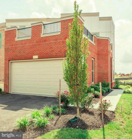 6 Cumulus Terrace, ASHBURN, VA 20148 (#VALO268050) :: AJ Team Realty