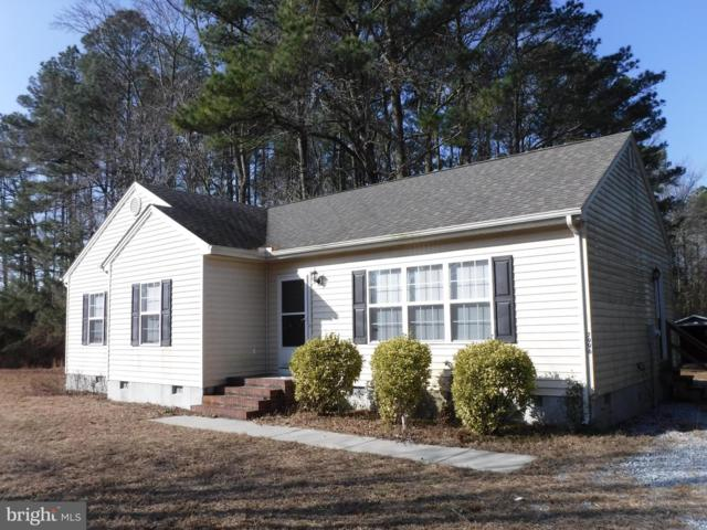7996 Hurleys Neck Road, MARDELA SPRINGS, MD 21837 (#MDWC101126) :: Coastal Life Realty Group