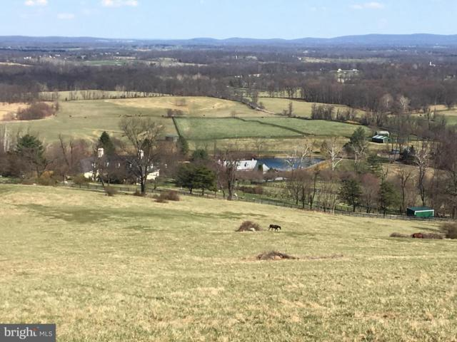 20561 Trappe Road, UPPERVILLE, VA 20184 (#VALO268054) :: ExecuHome Realty