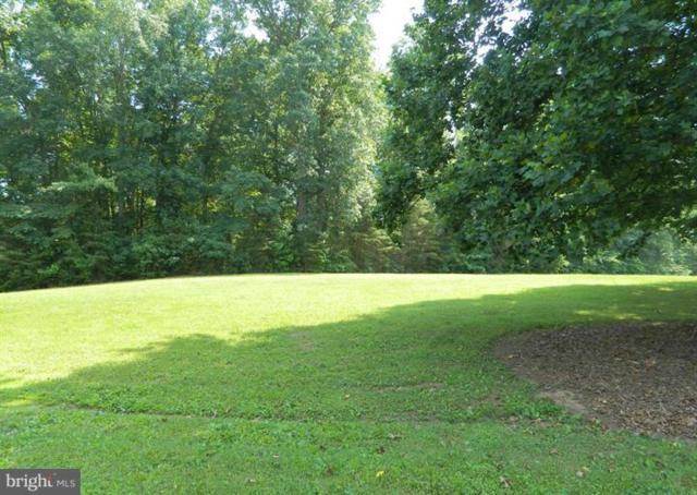 Elk Creek Rd, MINERAL, VA 23117 (#VALA108494) :: SURE Sales Group