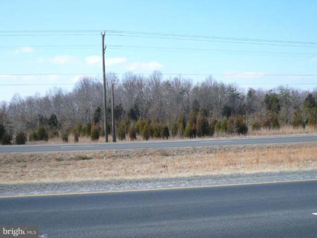 James Madison Highway E, BEALETON, VA 22712 (#VAFQ133464) :: Jacobs & Co. Real Estate