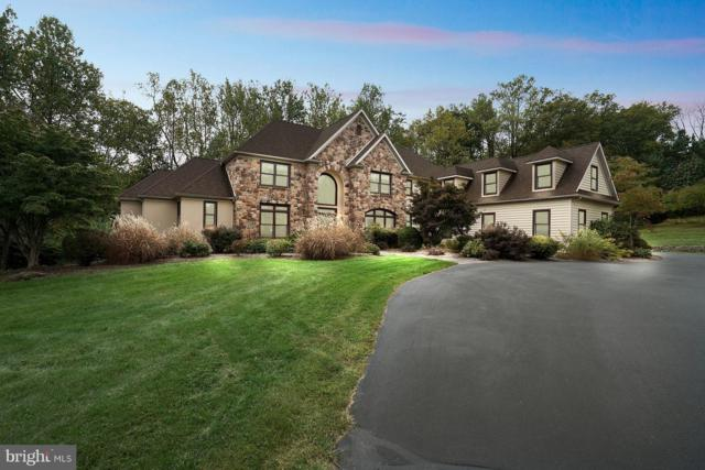 6704 Armitage Road, NEW HOPE, PA 18938 (#PABU307846) :: Colgan Real Estate