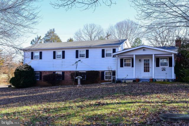 5523 Waterford Road, RIXEYVILLE, VA 22737 (#VACU119958) :: Colgan Real Estate
