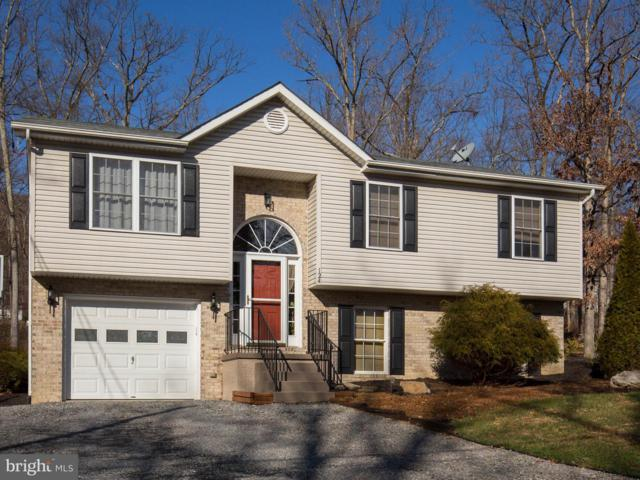 124 Graywolf Trail, WINCHESTER, VA 22602 (#VAFV127786) :: Blue Key Real Estate Sales Team