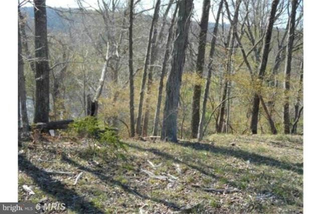 15 Creekside, CAPON BRIDGE, WV 26711 (#WVHS106020) :: ExecuHome Realty