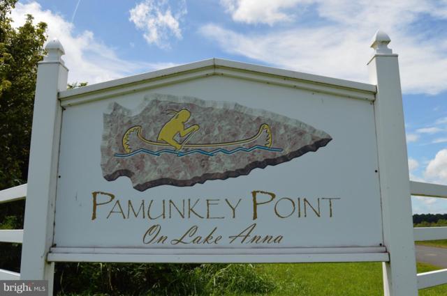 17200 Arrow Point Drive, ORANGE, VA 22960 (#VASP165336) :: Dart Homes