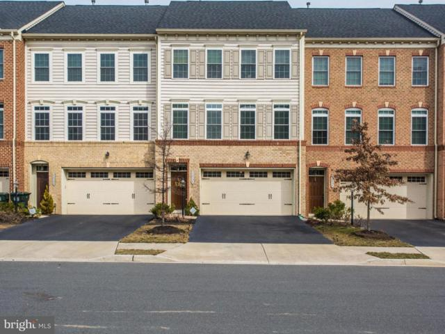42534 Pine Forest Drive, CHANTILLY, VA 20152 (#VALO268288) :: Circadian Realty Group