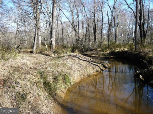 9710 Fringe Tree Road, GREAT FALLS, VA 22066 (#VAFX747144) :: The Putnam Group