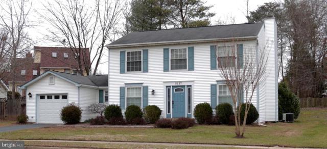 5217 Rushbrook Drive, CENTREVILLE, VA 20120 (#VAFX747166) :: The Putnam Group