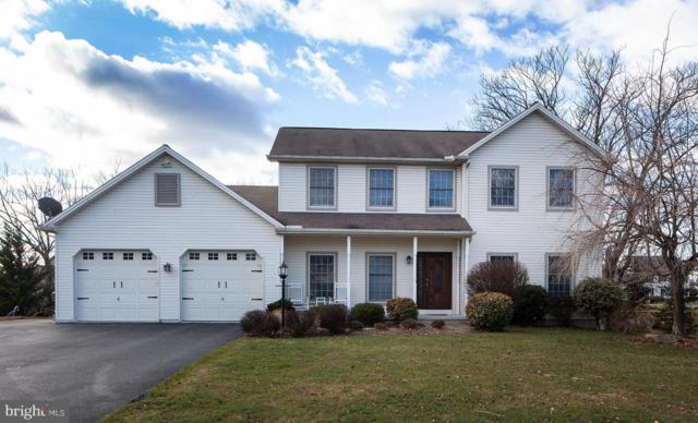 149 Christian Drive, HUMMELSTOWN, PA 17036 (#PADA105154) :: The Joy Daniels Real Estate Group