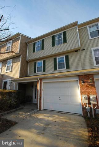 8441 Oak Bush Terrace, COLUMBIA, MD 21045 (#MDHW209484) :: Bic DeCaro & Associates