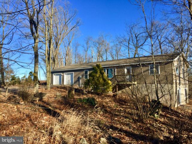 325 BLUE MOUNTAIN RD, SCHUYLKILL HAVEN, PA 17972 (#PASK115882) :: Jason Freeby Group at Keller Williams Real Estate