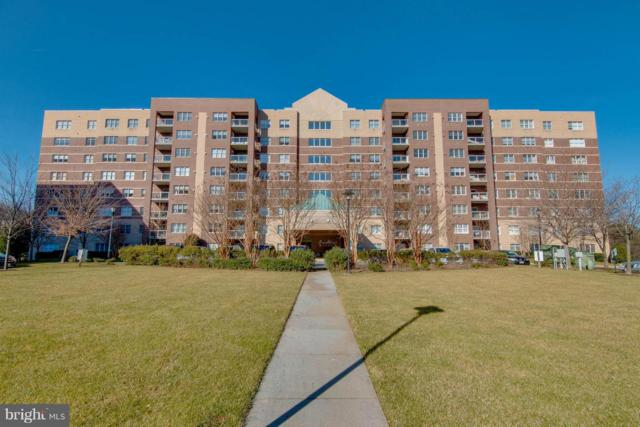 12246 Roundwood Road #309, LUTHERVILLE TIMONIUM, MD 21093 (#MDBC332484) :: The MD Home Team