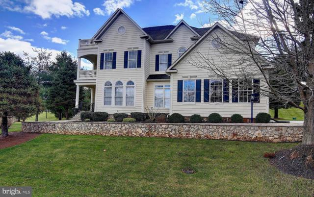 41613 Swiftwater Drive, LEESBURG, VA 20176 (#VALO268448) :: Wes Peters Group Of Keller Williams Realty Centre