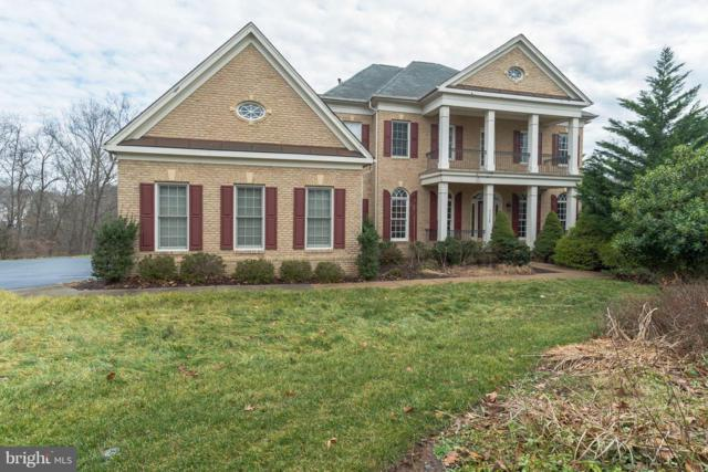 43238 Parkers Ridge Drive, LEESBURG, VA 20176 (#VALO268460) :: The Putnam Group