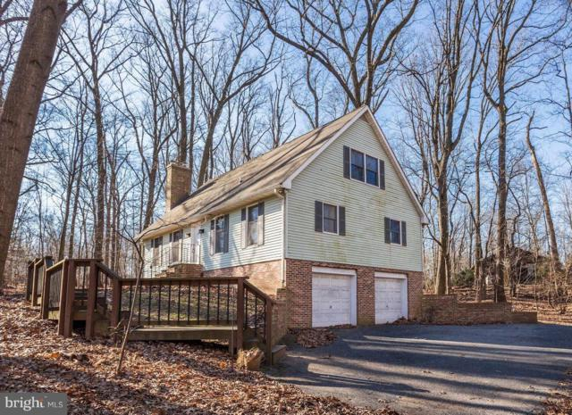 16517 Old Frederick Road, LISBON, MD 21765 (#MDHW209510) :: The Gus Anthony Team