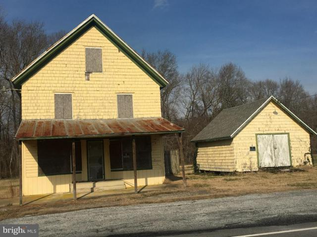 35115 Johnson Store Road, SELBYVILLE, DE 19975 (#DESU129376) :: The Windrow Group