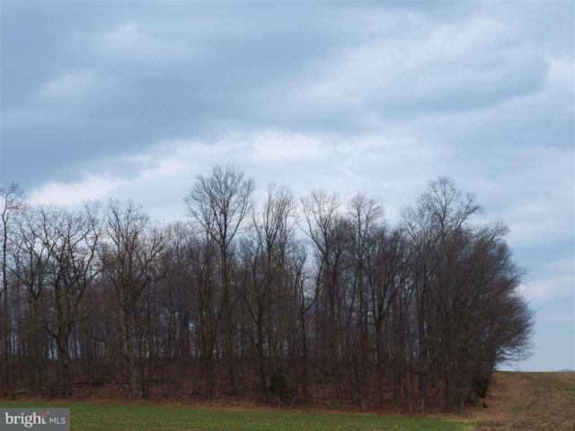Nace Road Lot 3, DELTA, PA 17314 (#PAYK106118) :: The Heather Neidlinger Team With Berkshire Hathaway HomeServices Homesale Realty