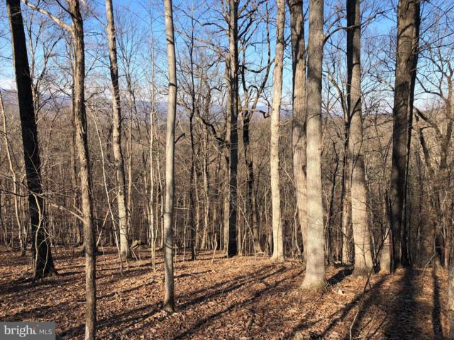 Vulpine Drive, GERRARDSTOWN, WV 25420 (#WVBE134500) :: ExecuHome Realty