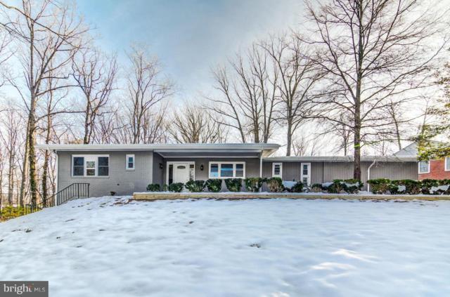 301 Braehead Drive, FREDERICKSBURG, VA 22401 (#VAFB108676) :: Blue Key Real Estate Sales Team