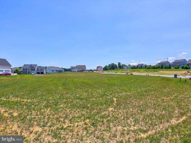 385 Amber Drive Lot 47, LITITZ, PA 17543 (#PALA115390) :: Colgan Real Estate