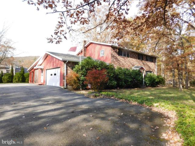 33 Dogwood Lane, NESQUEHONING, PA 18240 (#PASK115952) :: The Heather Neidlinger Team With Berkshire Hathaway HomeServices Homesale Realty