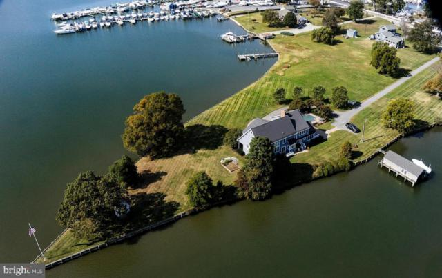 1133 Turkey Point Road, EDGEWATER, MD 21037 (#MDAA303658) :: The Bob & Ronna Group