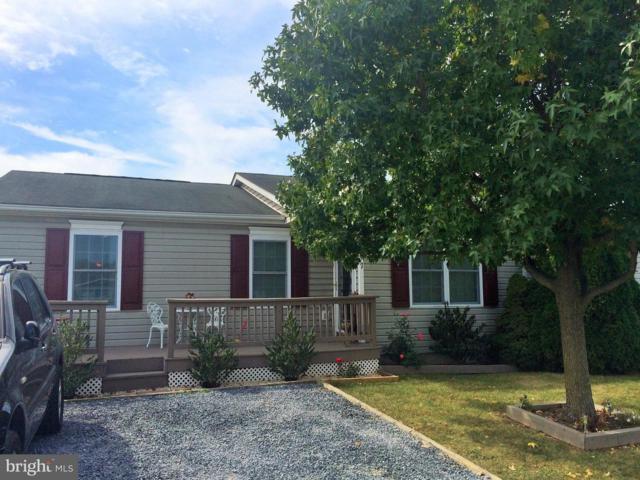 117 Johnston Drive, WINCHESTER, VA 22603 (#VAFV127916) :: Eng Garcia Grant & Co.