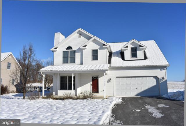 4924 Carmack Court, MERCERSBURG, PA 17236 (#PAFL141800) :: The Heather Neidlinger Team With Berkshire Hathaway HomeServices Homesale Realty