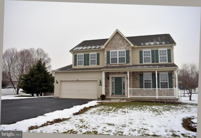 1431 Mallard Drive E, CHAMBERSBURG, PA 17202 (#PAFL141804) :: The Heather Neidlinger Team With Berkshire Hathaway HomeServices Homesale Realty
