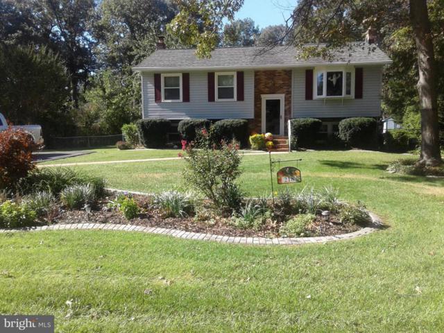 218 9TH Street, PASADENA, MD 21122 (#MDAA303720) :: Blue Key Real Estate Sales Team