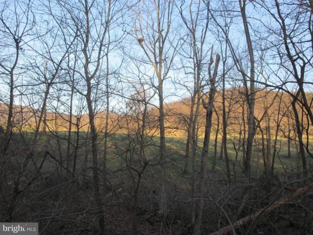 LOT 11A Jones Farm Road, BENTONVILLE, VA 22610 (#VAWR118294) :: ExecuHome Realty