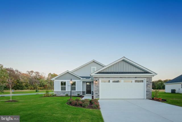 1113 Emerald Drive, KING GEORGE, VA 22485 (#VAKG108734) :: Great Falls Great Homes