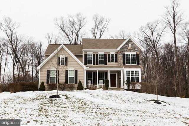 203 Crimson Lane, ELIZABETHTOWN, PA 17022 (#PALA115476) :: The Heather Neidlinger Team With Berkshire Hathaway HomeServices Homesale Realty