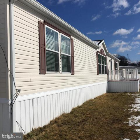 58 Queen Eleanor, ELKTON, MD 21921 (#MDCC135244) :: Wes Peters Group Of Keller Williams Realty Centre