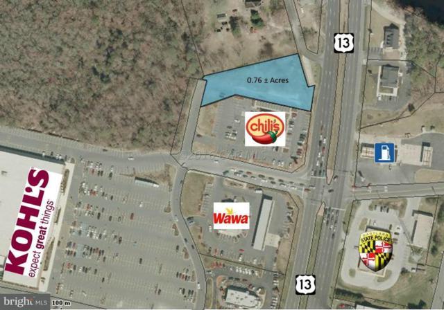 N Salisbury Boulevard, SALISBURY, MD 21801 (#MDWC101320) :: The Rhonda Frick Team