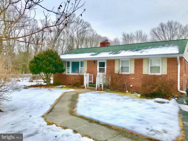 20136 Broad Run Drive, STERLING, VA 20165 (#VALO268830) :: ExecuHome Realty